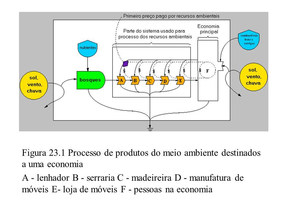 Figura 23.1 Processo de produtos do meio ambiente destinados a uma economia A - lenhador B - serraria C - madeireira D - manufatura de móveis E- loja