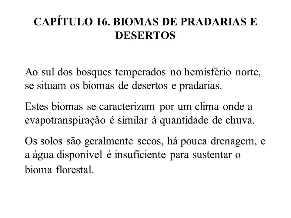CAPÍTULO 16. BIOMAS DE PRADARIAS E DESERTOS Ao sul dos bosques temperados no hemisfério norte, se situam os biomas de desertos e pradarias. Estes biom