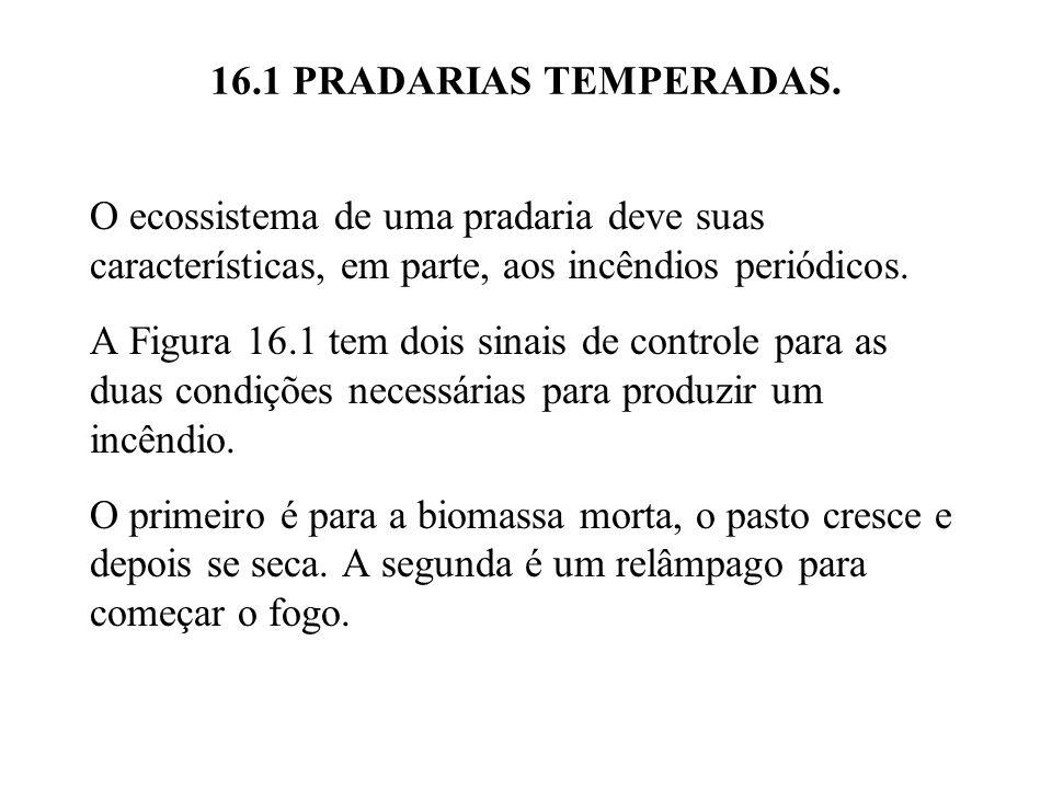16.1 PRADARIAS TEMPERADAS. O ecossistema de uma pradaria deve suas características, em parte, aos incêndios periódicos. A Figura 16.1 tem dois sinais