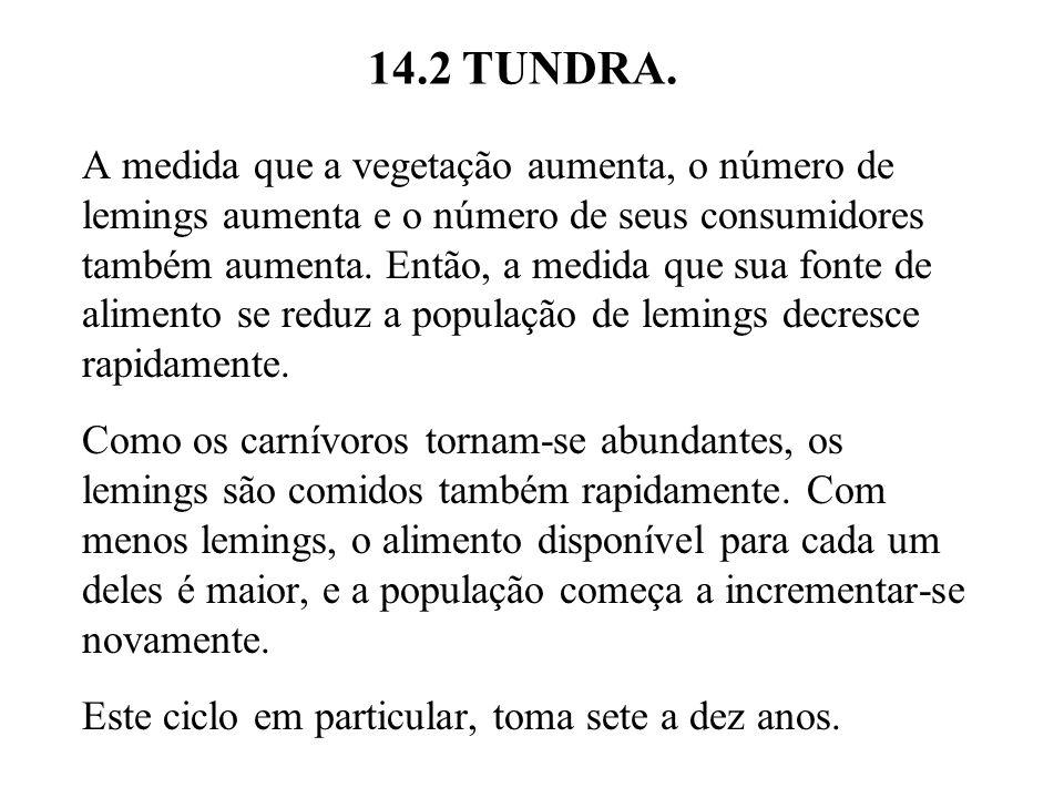 14.2 TUNDRA. A medida que a vegetação aumenta, o número de lemings aumenta e o número de seus consumidores também aumenta. Então, a medida que sua fon