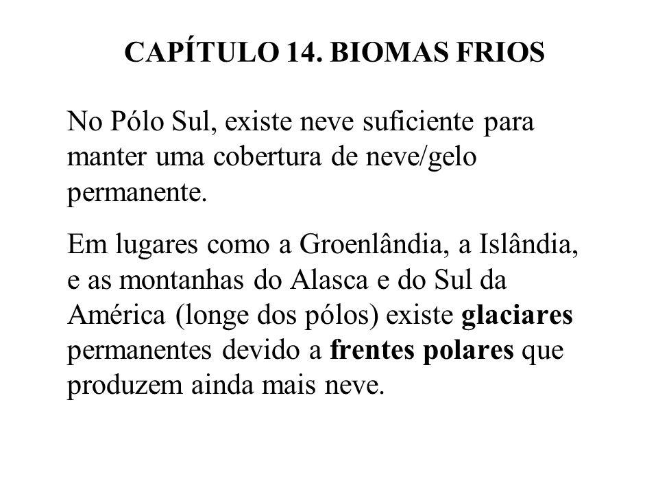 CAPÍTULO 14. BIOMAS FRIOS No Pólo Sul, existe neve suficiente para manter uma cobertura de neve/gelo permanente. Em lugares como a Groenlândia, a Islâ