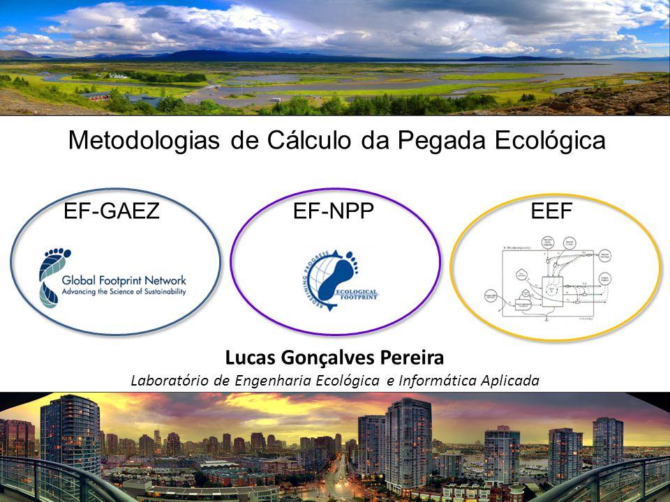 Lucas Gonçalves Pereira Laboratório de Engenharia Ecológica e Informática Aplicada Metodologias de Cálculo da Pegada Ecológica EF-NPPEF-GAEZEEF