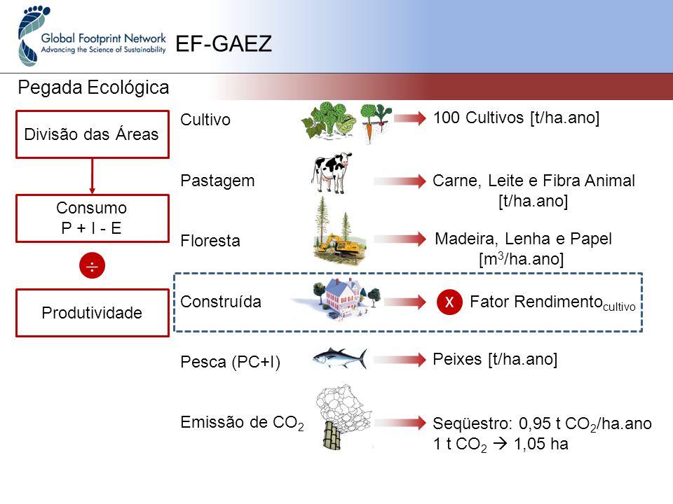 EF-GAEZ Pegada Ecológica Cultivo Pastagem Floresta Construída Pesca (PC+I) Emissão de CO 2 Divisão das Áreas X Consumo P + I - E 100 Cultivos [t/ha.ano] Carne, Leite e Fibra Animal [t/ha.ano] Madeira, Lenha e Papel [m 3 /ha.ano] Fator Rendimento cultivo Peixes [t/ha.ano] Seqüestro: 0,95 t CO 2 /ha.ano 1 t CO 2  1,05 ha  Produtividade