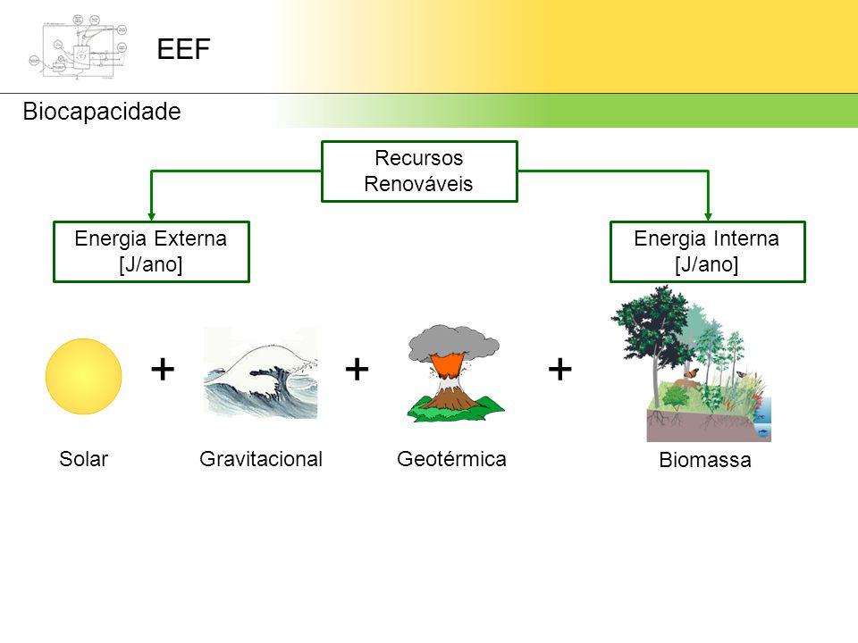 EEF Biocapacidade +++ SolarGravitacionalGeotérmica Recursos Renováveis Energia Externa [J/ano] Energia Interna [J/ano] Biomassa