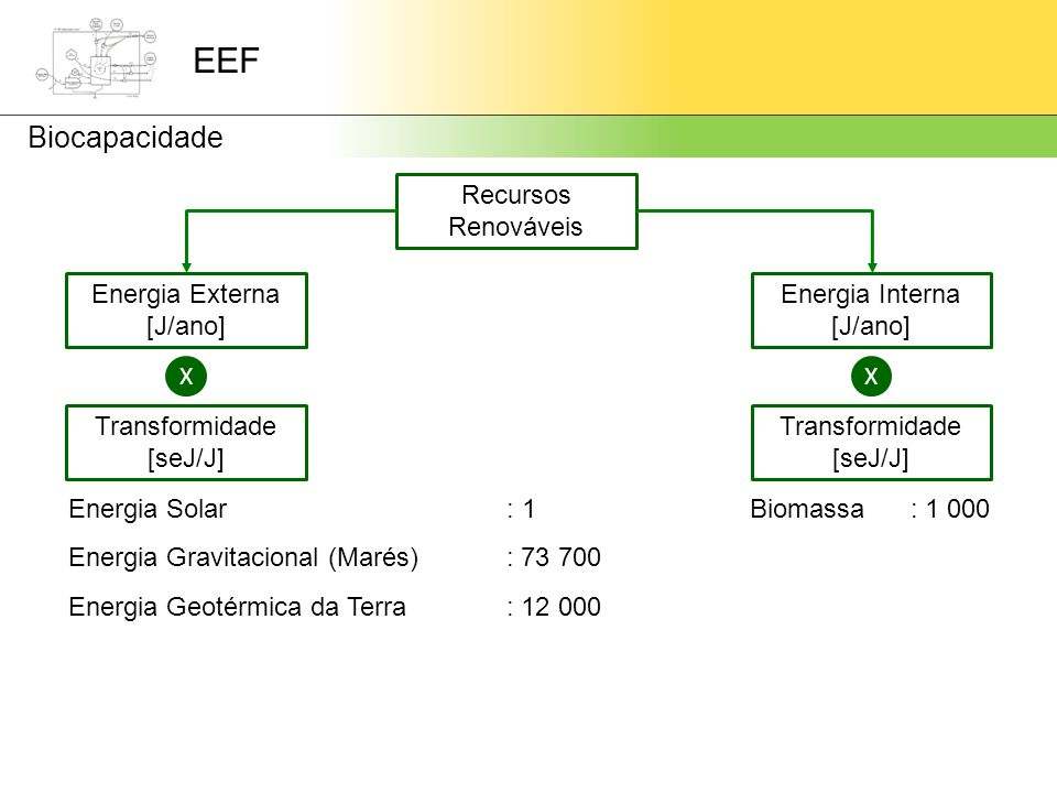 EEF Biocapacidade Recursos Renováveis Energia Externa [J/ano] Energia Interna [J/ano] XX Transformidade [seJ/J] Transformidade [seJ/J] Energia Solar Energia Gravitacional (Marés) Energia Geotérmica da Terra Biomassa : 1 : 73 700 : 12 000 : 1 000