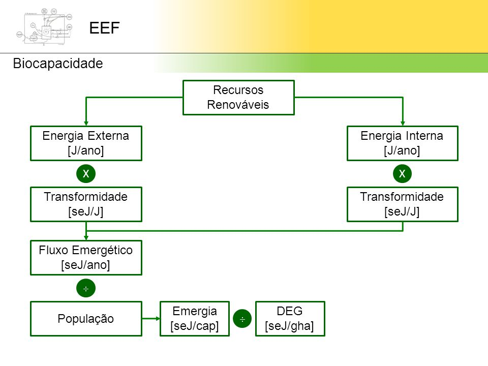 EEF Biocapacidade Recursos Renováveis Energia Externa [J/ano] Energia Interna [J/ano] XX Transformidade [seJ/J] Transformidade [seJ/J] Fluxo Emergético [seJ/ano]  População Emergia [seJ/cap]  DEG [seJ/gha]