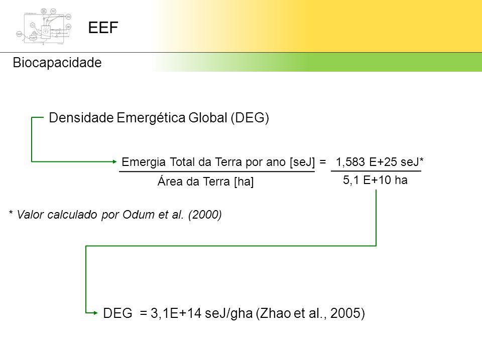 Densidade Emergética Global (DEG) Emergia Total da Terra por ano [seJ] Área da Terra [ha] 1,583 E+25 seJ* 5,1 E+10 ha DEG = 3,1E+14 seJ/gha (Zhao et al., 2005) * Valor calculado por Odum et al.