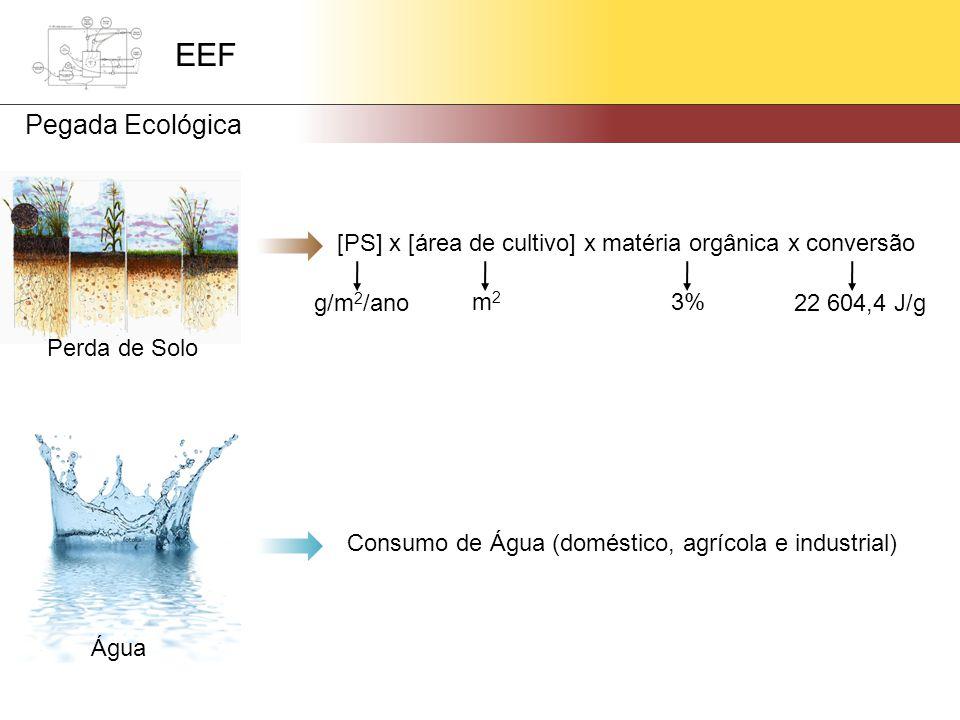 [PS] x [área de cultivo] x matéria orgânica x conversão g/m 2 /ano Perda de Solo m2m2 3% 22 604,4 J/g Consumo de Água (doméstico, agrícola e industrial) Água EEF Pegada Ecológica