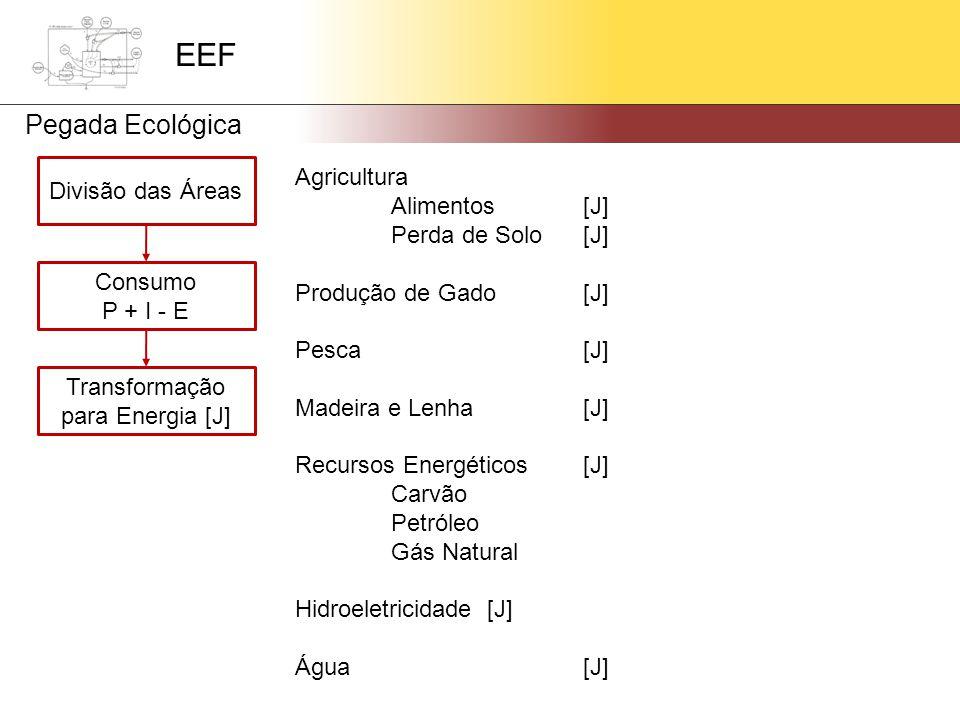 Divisão das Áreas Consumo P + I - E Transformação para Energia [J] Agricultura Alimentos[J] Perda de Solo[J] Produção de Gado[J] Pesca[J] Madeira e Lenha[J] Recursos Energéticos[J] Carvão Petróleo Gás Natural Hidroeletricidade[J] Água[J] EEF Pegada Ecológica