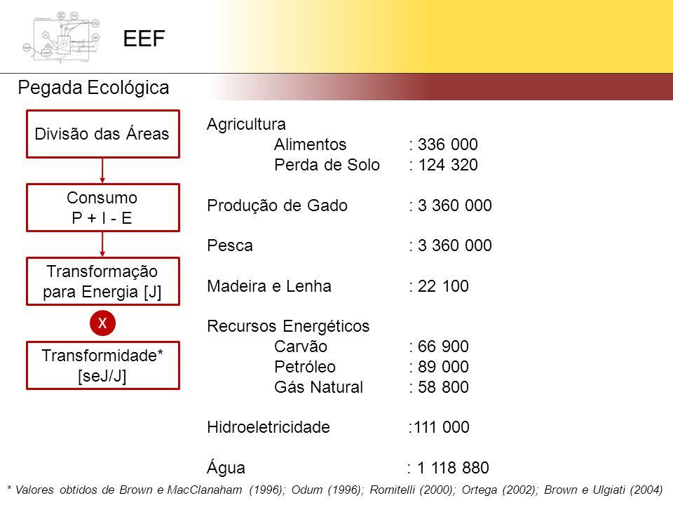 Divisão das Áreas Consumo P + I - E Transformação para Energia [J] X Transformidade* [seJ/J] Agricultura Alimentos: 336 000 Perda de Solo: 124 320 Produção de Gado: 3 360 000 Pesca: 3 360 000 Madeira e Lenha: 22 100 Recursos Energéticos Carvão: 66 900 Petróleo: 89 000 Gás Natural: 58 800 Hidroeletricidade :111 000 Água : 1 118 880 * Valores obtidos de Brown e MacClanaham (1996); Odum (1996); Romitelli (2000); Ortega (2002); Brown e Ulgiati (2004) EEF Pegada Ecológica