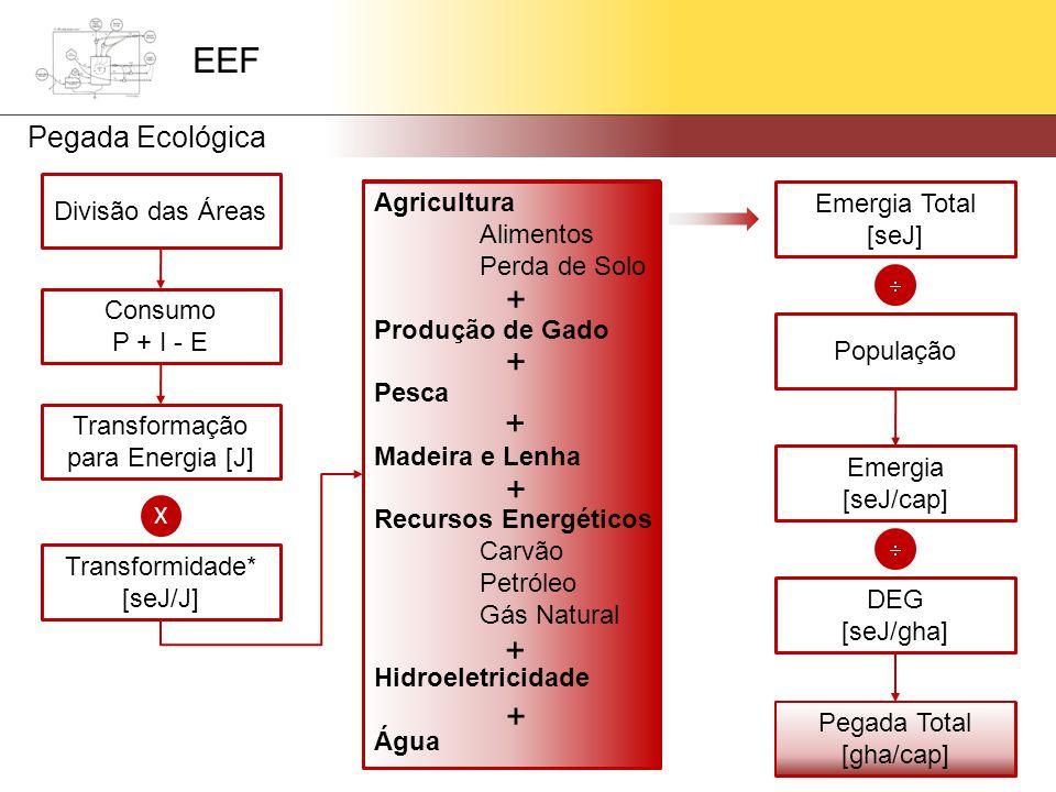 Divisão das Áreas Consumo P + I - E Transformação para Energia [J] X Transformidade* [seJ/J] Emergia Total [seJ]  População Emergia [seJ/cap]  DEG [seJ/gha] Pegada Total [gha/cap] Agricultura Alimentos Perda de Solo Produção de Gado Pesca Madeira e Lenha Recursos Energéticos Carvão Petróleo Gás Natural Hidroeletricidade Água Pegada Total [gha/cap] EEF Pegada Ecológica + + + + + +