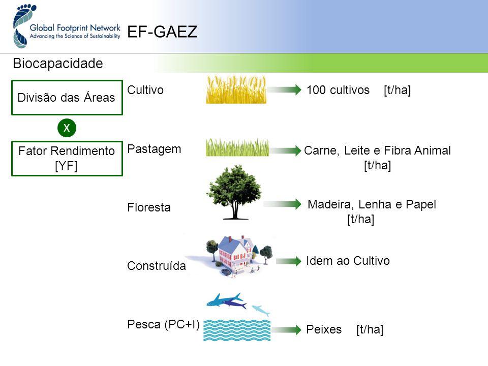 Cultivo Pastagem Floresta Construída Pesca (PC+I) EF-GAEZ Biocapacidade Divisão das Áreas X Fator Rendimento [YF] 100 cultivos [t/ha] Carne, Leite e Fibra Animal [t/ha] Madeira, Lenha e Papel [t/ha] Idem ao Cultivo Peixes [t/ha]