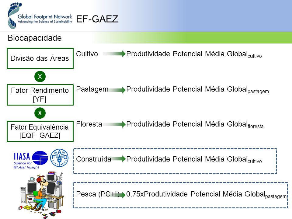 EF-GAEZ Biocapacidade Cultivo Pastagem Floresta Construída Pesca (PC+I) Divisão das Áreas X Fator Rendimento [YF] Fator Equivalência [EQF_GAEZ] X Produtividade Potencial Média Global cultivo Produtividade Potencial Média Global pastagem Produtividade Potencial Média Global floresta Produtividade Potencial Média Global cultivo 0,75xProdutividade Potencial Média Global pastagem