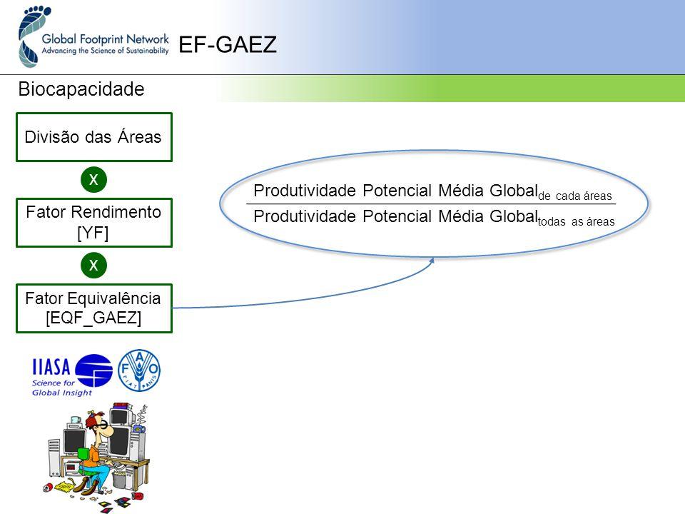 EF-GAEZ Biocapacidade Divisão das Áreas X Fator Rendimento [YF] Fator Equivalência [EQF_GAEZ] X Produtividade Potencial Média Global de cada áreas Produtividade Potencial Média Global todas as áreas