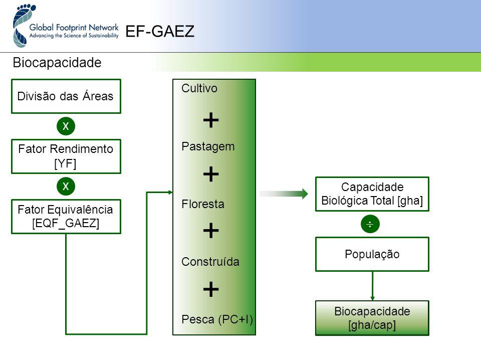 EF-GAEZ Biocapacidade Divisão das Áreas X Fator Rendimento [YF] Fator Equivalência [EQF_GAEZ] X + + + + Capacidade Biológica Total [gha]  População Biocapacidade [gha/cap] Cultivo Pastagem Floresta Construída Pesca (PC+I)