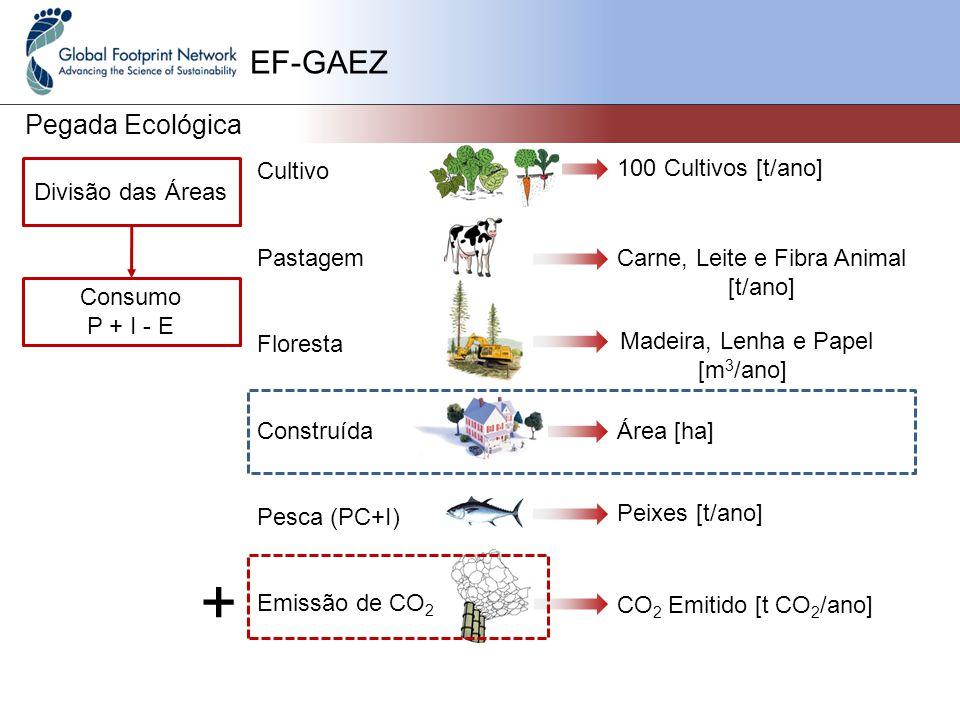 EF-GAEZ Pegada Ecológica Cultivo Pastagem Floresta Construída Pesca (PC+I) Emissão de CO 2 Divisão das Áreas Consumo P + I - E 100 Cultivos [t/ano] Carne, Leite e Fibra Animal [t/ano] Madeira, Lenha e Papel [m 3 /ano] Área [ha] Peixes [t/ano] CO 2 Emitido [t CO 2 /ano] +