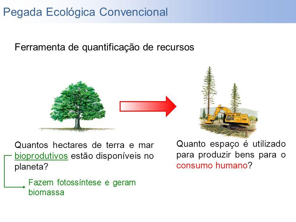 Pegada Ecológica Convencional Ferramenta de quantificação de recursos Quantos hectares de terra e mar bioprodutivos estão disponíveis no planeta? Quan