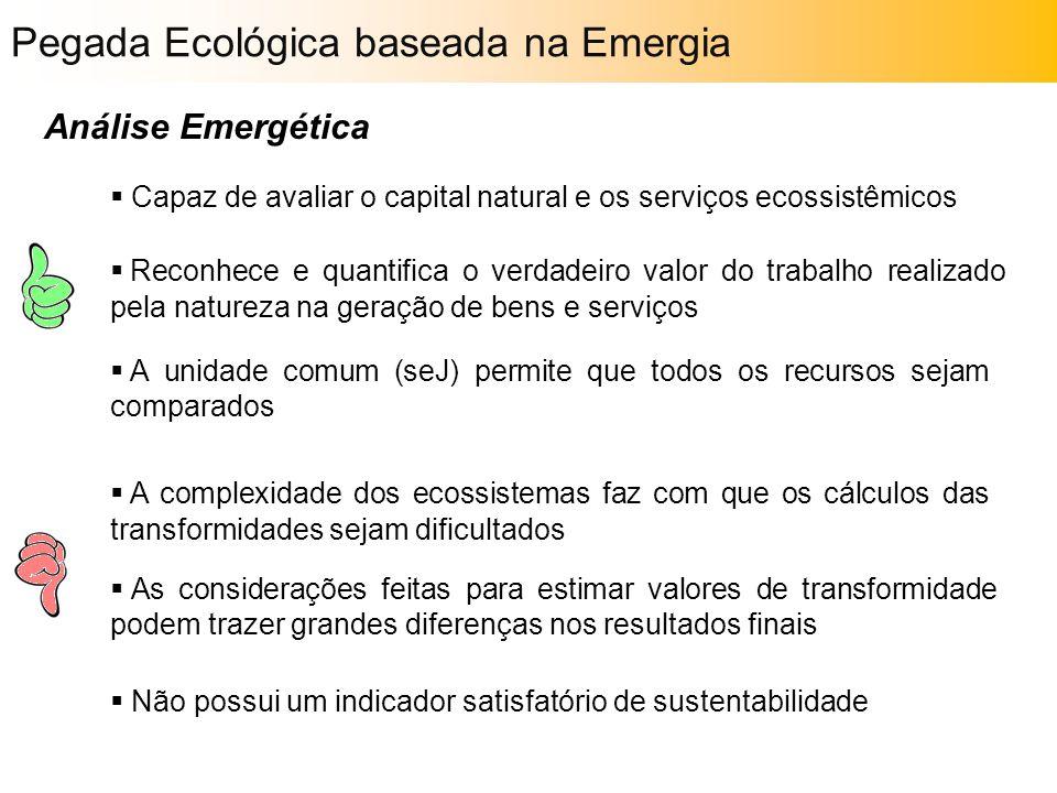Análise Emergética  Capaz de avaliar o capital natural e os serviços ecossistêmicos  Reconhece e quantifica o verdadeiro valor do trabalho realizado