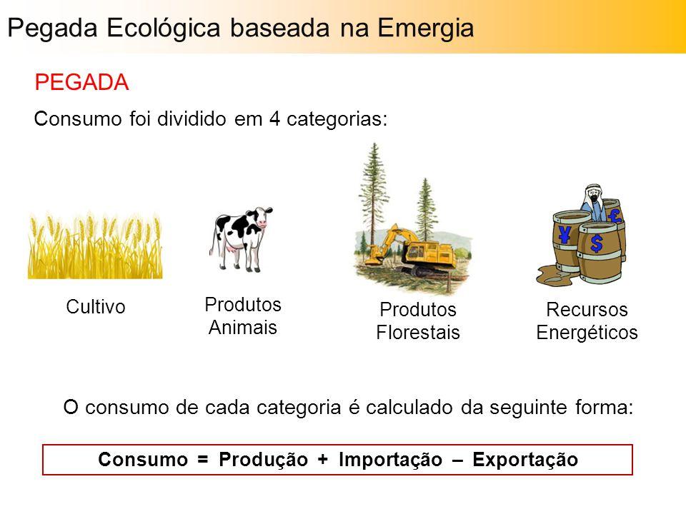 O consumo de cada categoria é calculado da seguinte forma: Consumo foi dividido em 4 categorias: Cultivo Produtos Animais Produtos Florestais Recursos