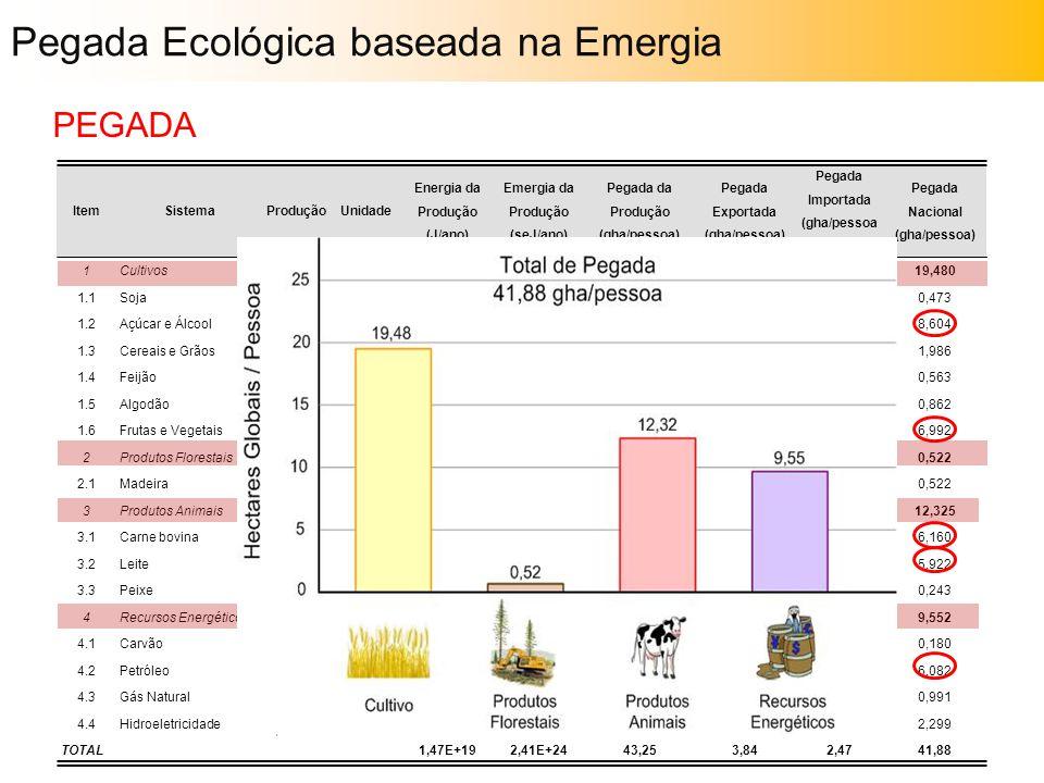 ItemSistemaProduçãoUnidade Energia da Produção (J/ano) Emergia da Produção (seJ/ano) Pegada da Produção (gha/pessoa) Pegada Exportada (gha/pessoa) Peg
