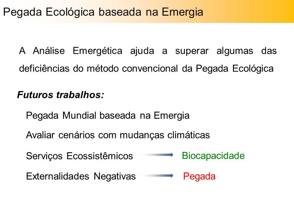 A Análise Emergética ajuda a superar algumas das deficiências do método convencional da Pegada Ecológica Futuros trabalhos: Serviços Ecossistêmicos Ex