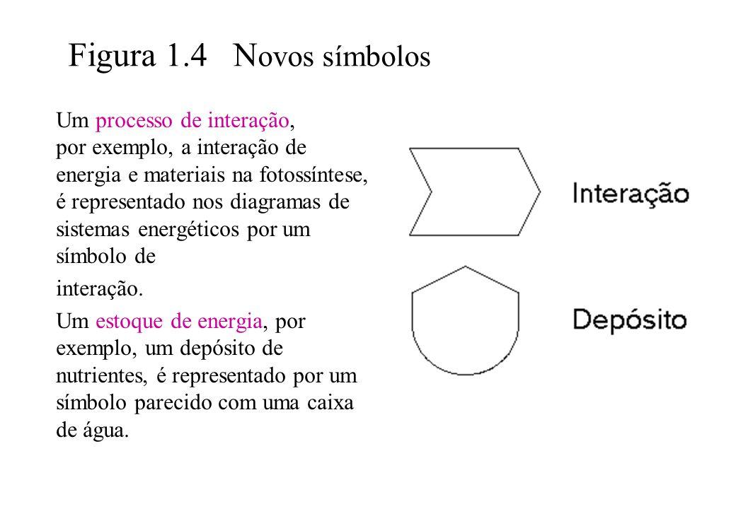 Figura 1.4 N ovos símbolos Um processo de interação, por exemplo, a interação de energia e materiais na fotossíntese, é representado nos diagramas de