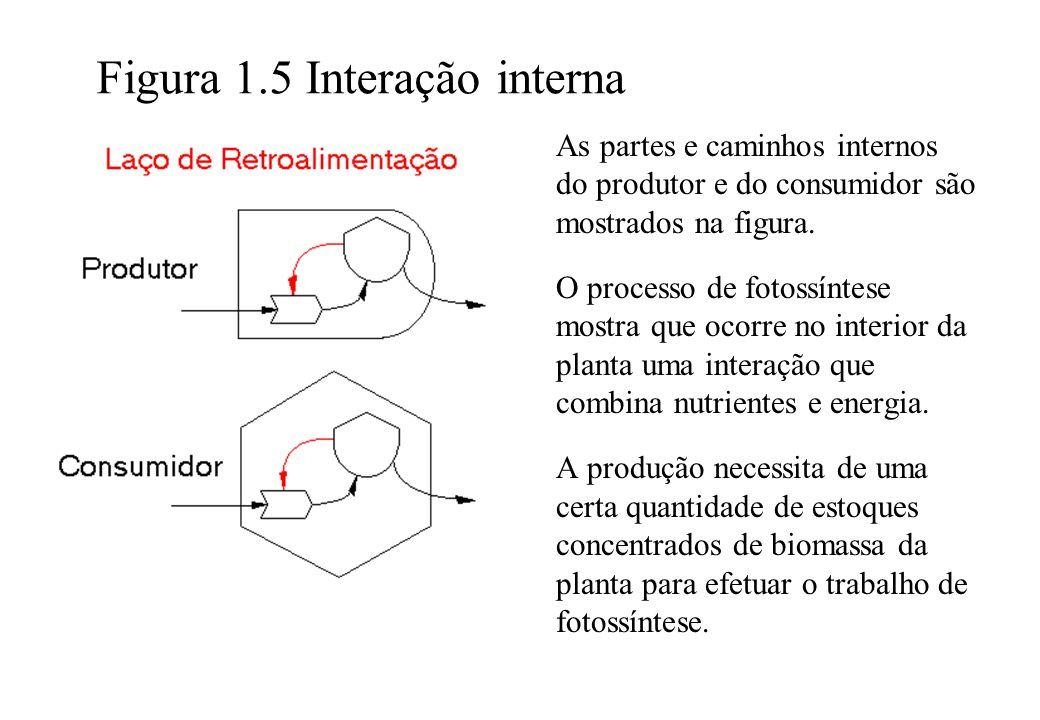 Figura 1.5 Interação interna As partes e caminhos internos do produtor e do consumidor são mostrados na figura. O processo de fotossíntese mostra que