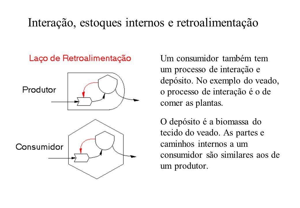 Interação, estoques internos e retroalimentação Um consumidor também tem um processo de interação e depósito. No exemplo do veado, o processo de inter
