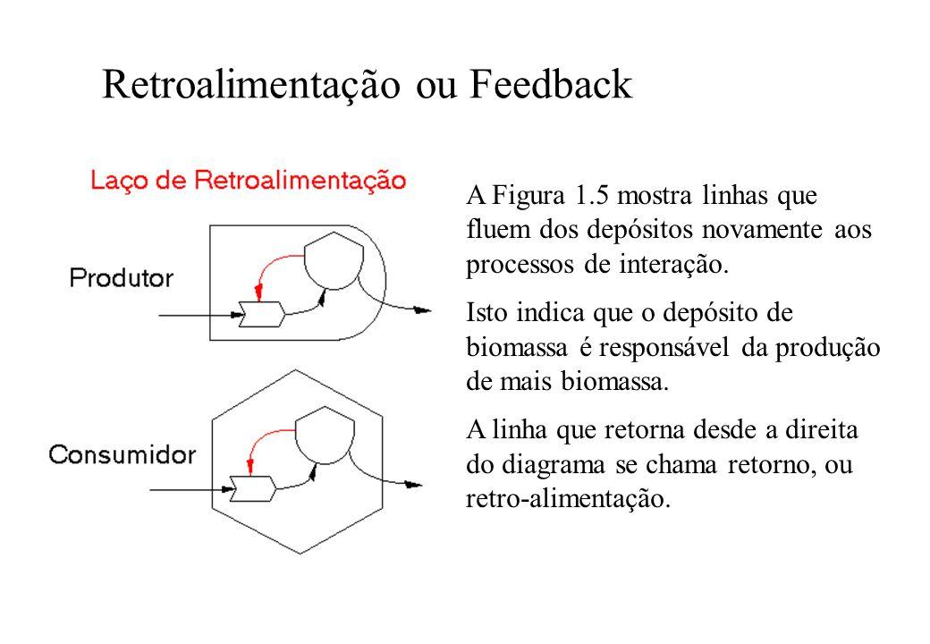 Retroalimentação ou Feedback A Figura 1.5 mostra linhas que fluem dos depósitos novamente aos processos de interação. Isto indica que o depósito de bi