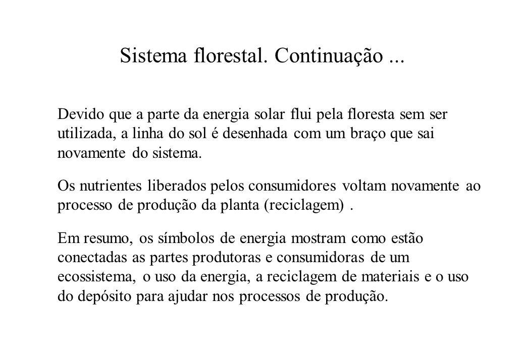 Sistema florestal. Continuação... Devido que a parte da energia solar flui pela floresta sem ser utilizada, a linha do sol é desenhada com um braço qu