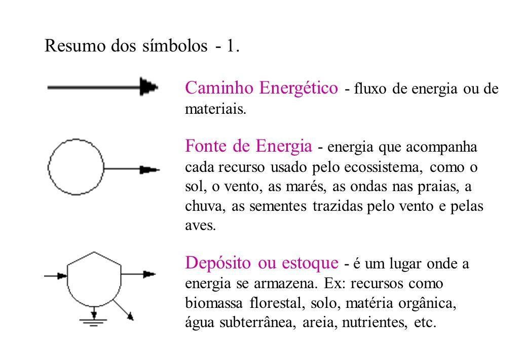 Resumo dos símbolos - 1. Caminho Energético - fluxo de energia ou de materiais. Fonte de Energia - energia que acompanha cada recurso usado pelo ecoss
