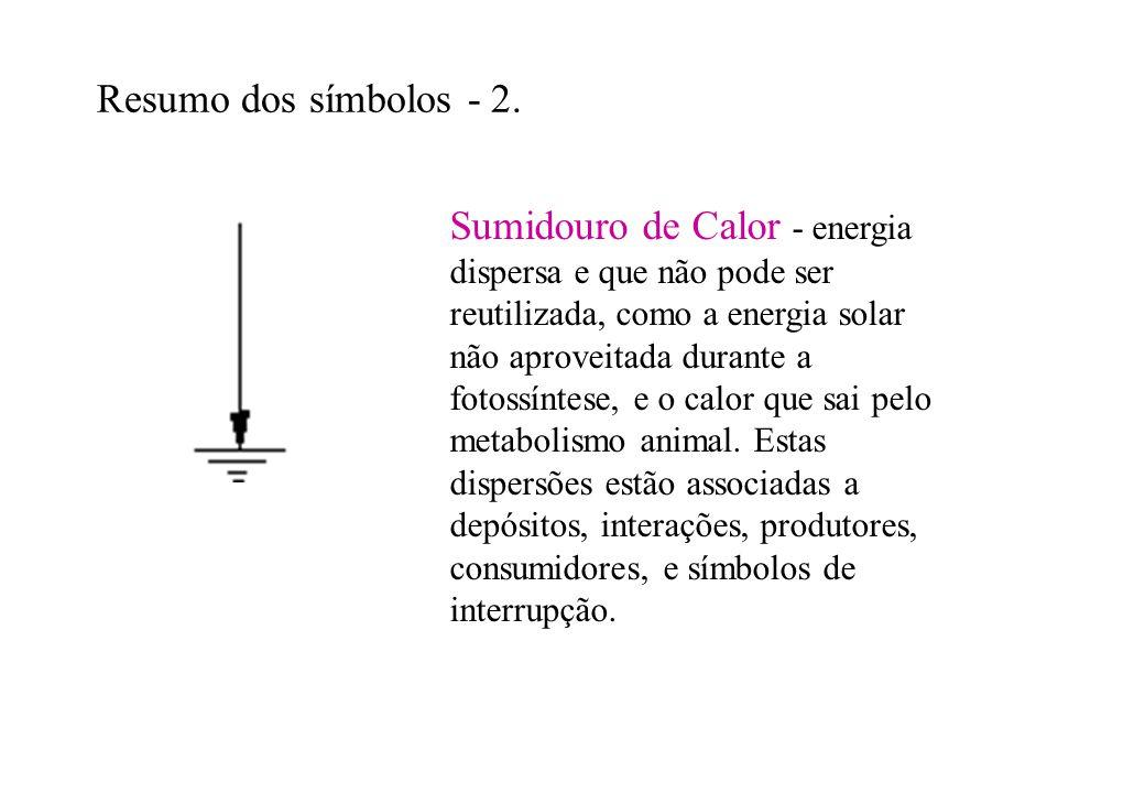 Resumo dos símbolos - 2. Sumidouro de Calor - energia dispersa e que não pode ser reutilizada, como a energia solar não aproveitada durante a fotossín