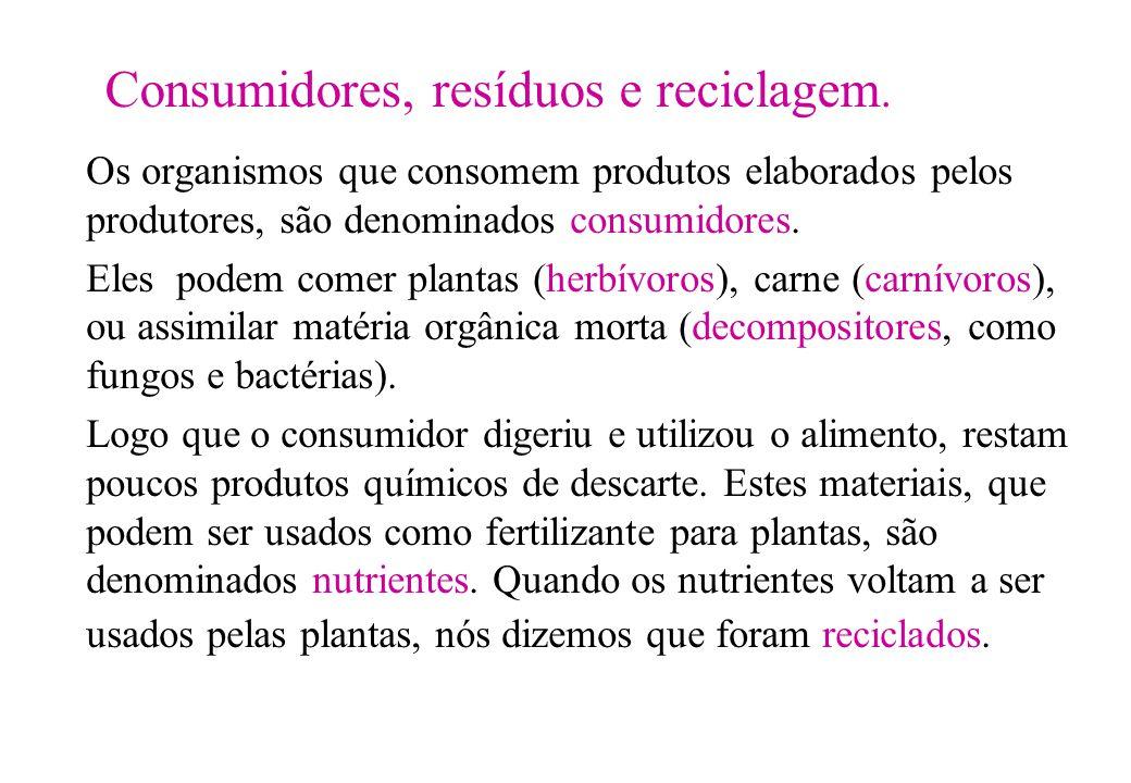 Consumidores, resíduos e reciclagem. Os organismos que consomem produtos elaborados pelos produtores, são denominados consumidores. Eles podem comer p