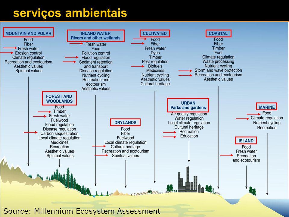 Source: Millennium Ecosystem Assessment serviços ambientais