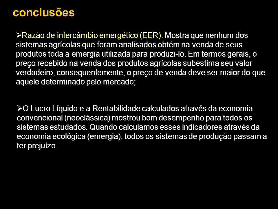 conclusões  O Lucro Líquido e a Rentabilidade calculados através da economia convencional (neoclássica) mostrou bom desempenho para todos os sistemas