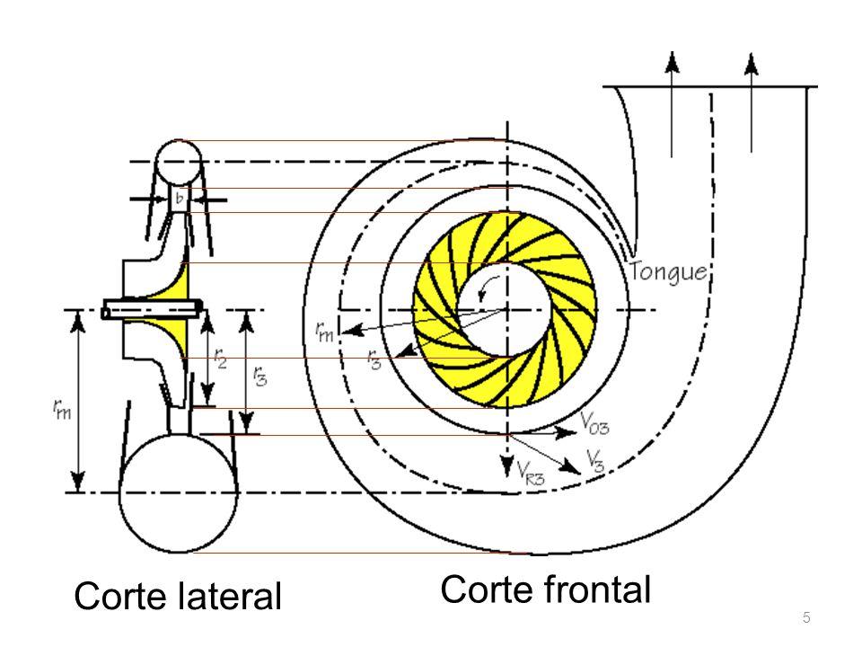 5 Corte lateral Corte frontal