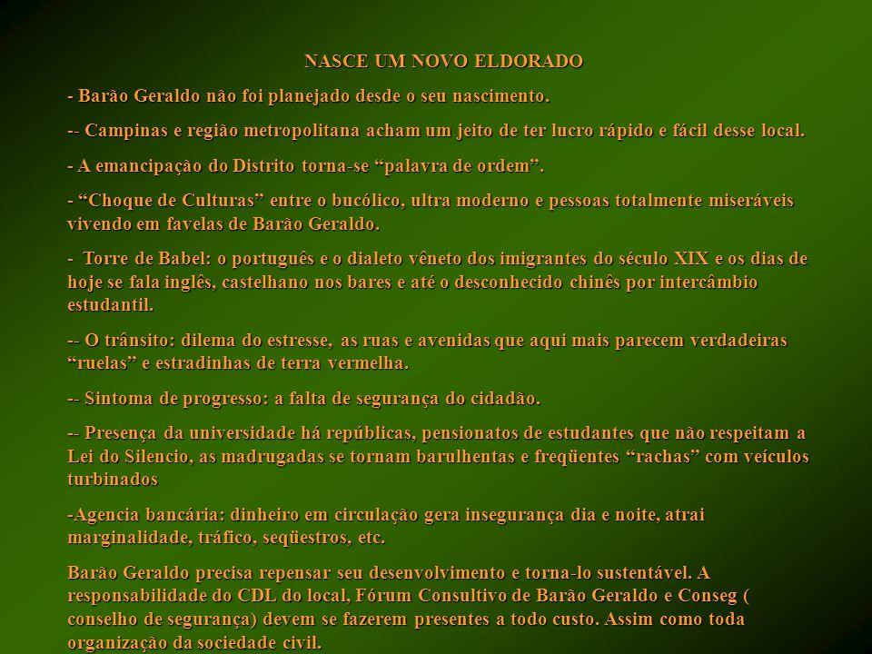 NASCE UM NOVO ELDORADO - Barão Geraldo não foi planejado desde o seu nascimento. -- Campinas e região metropolitana acham um jeito de ter lucro rápido