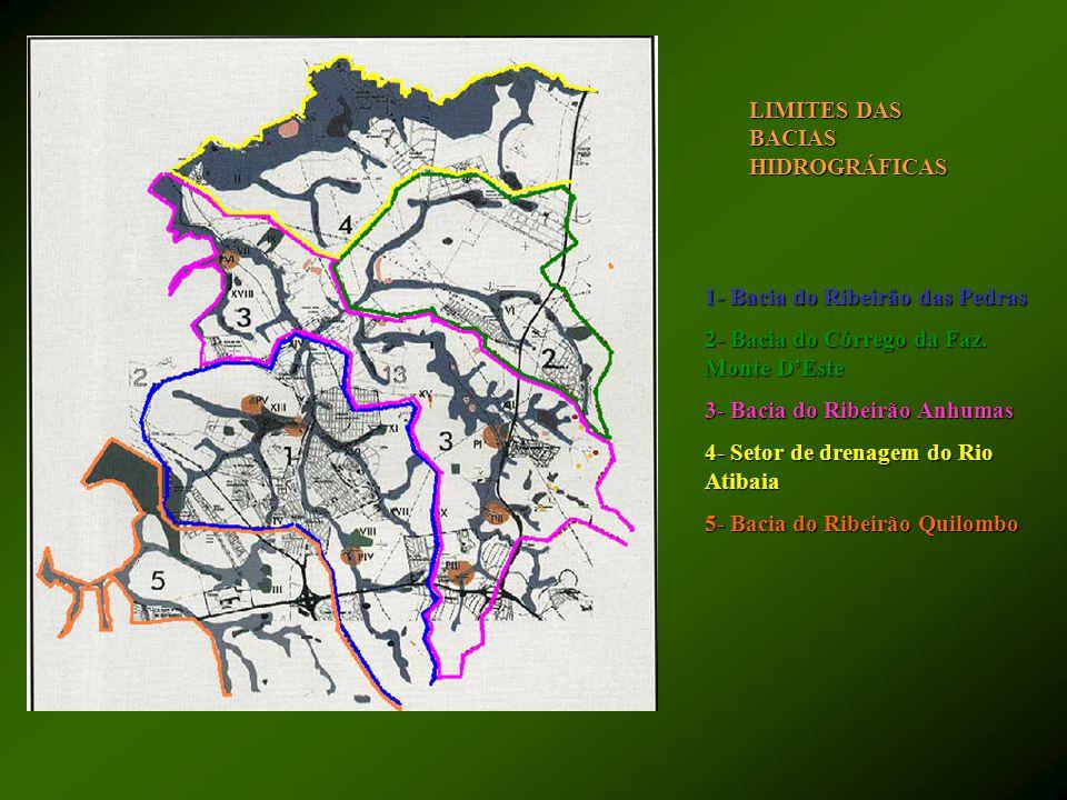 LIMITES DAS BACIAS HIDROGRÁFICAS 1- Bacia do Ribeirão das Pedras 2- Bacia do Córrego da Faz. Monte D'Este 3- Bacia do Ribeirão Anhumas 4- Setor de dre