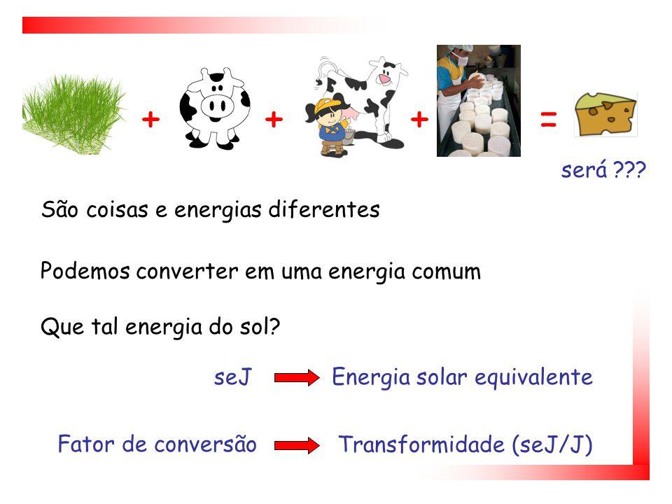 Ferramenta científica que ao contrário da análise econômica contabiliza os fluxos da natureza, os estoques e as externalidades negativas A Análise Emergética Memória da Energia Emergia ?