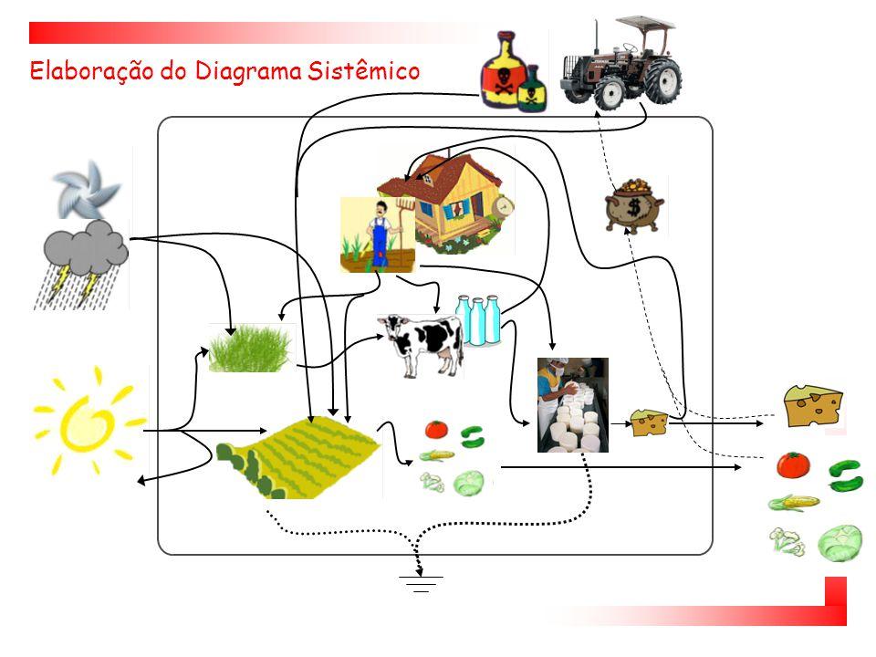 Análise Emergética Elaboração do diagrama sistêmico Montagem da Tabela de Avaliação Emergética Cálculo dos Índices Emergéticos Interpretação dos Resultados Conhecer o sistema  Metologia emergética (Odum, 1996)