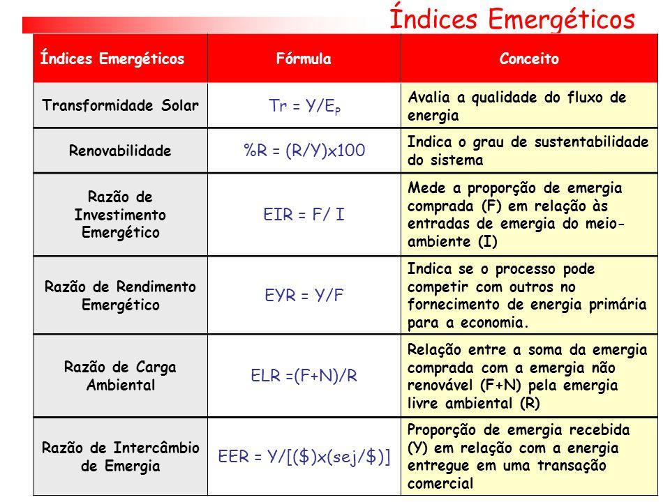 Montagem Tabela de Avaliação Emergética A coluna # 6 É o valor real da riqueza estimado em emdolares.