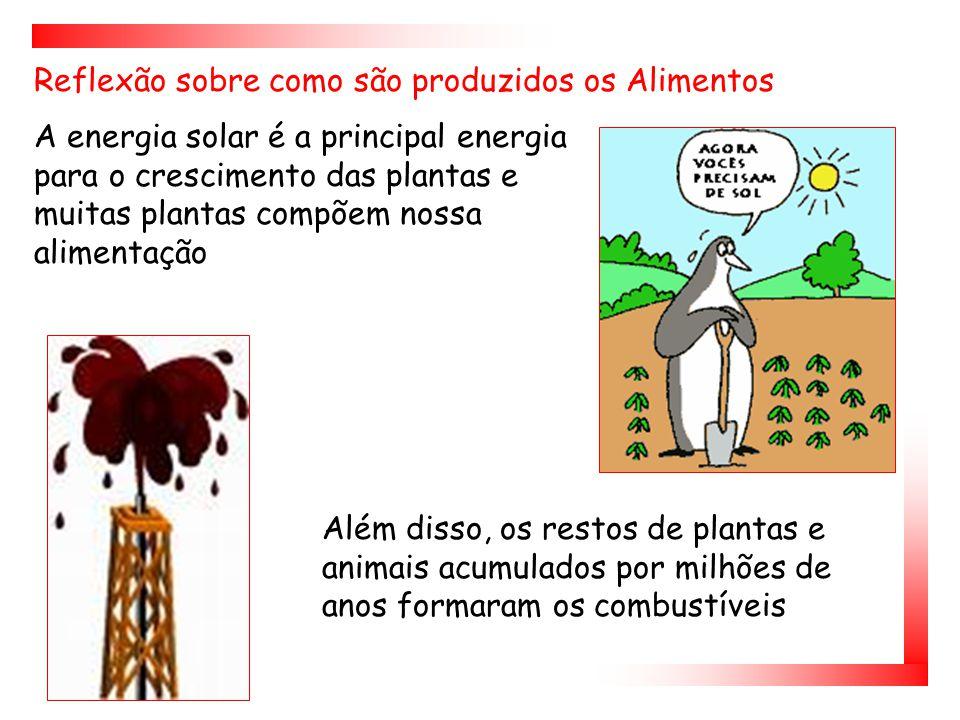 Além disso, os restos de plantas e animais acumulados por milhões de anos formaram os combustíveis A energia solar é a principal energia para o crescimento das plantas e muitas plantas compõem nossa alimentação Reflexão sobre como são produzidos os Alimentos