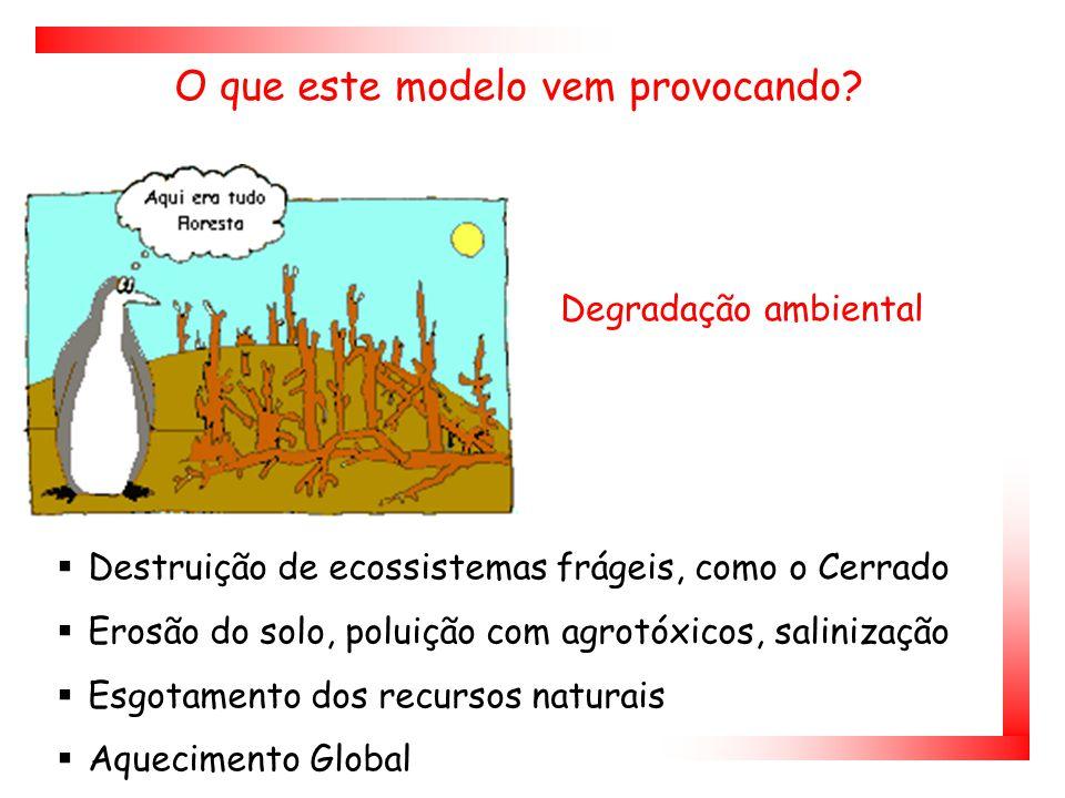 Degradação ambiental  Destruição de ecossistemas frágeis, como o Cerrado  Erosão do solo, poluição com agrotóxicos, salinização  Esgotamento dos recursos naturais  Aquecimento Global O que este modelo vem provocando?