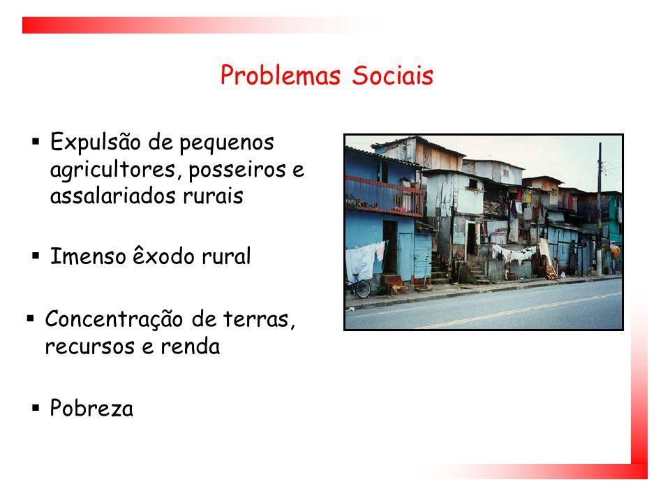 Problemas Sociais  Imenso êxodo rural  Concentração de terras, recursos e renda  Expulsão de pequenos agricultores, posseiros e assalariados rurais  Pobreza