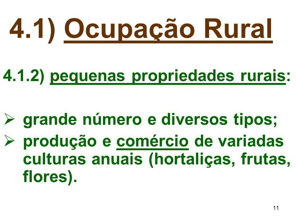 11 4.1) Ocupação Rural 4.1.2) pequenas propriedades rurais:  grande número e diversos tipos;  produção e comércio de variadas culturas anuais (horta