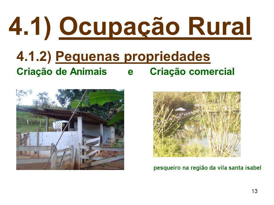 13 4.1) Ocupação Rural 4.1.2) Pequenas propriedades Criação de Animais e Criação comercial pesqueiro na região da vila santa isabel