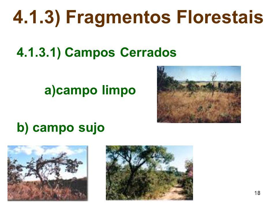 18 4.1.3) Fragmentos Florestais 4.1.3.1) Campos Cerrados a)campo limpo b) campo sujo