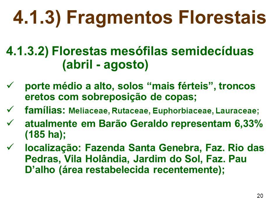 """20 4.1.3) Fragmentos Florestais 4.1.3.2) Florestas mesófilas semidecíduas (abril - agosto) porte médio a alto, solos """"mais férteis"""", troncos eretos co"""