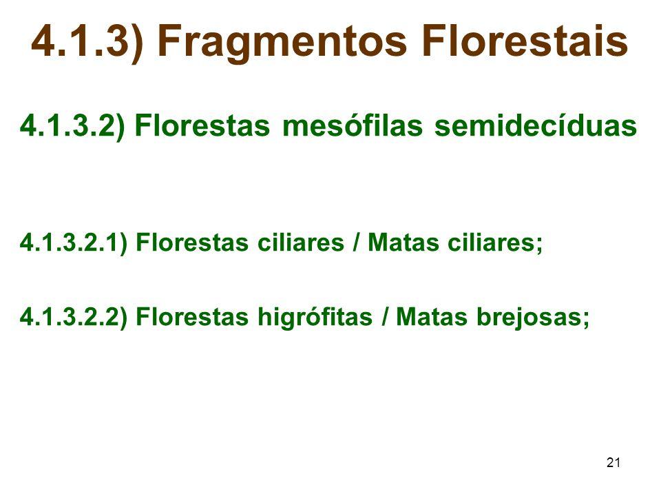 21 4.1.3) Fragmentos Florestais 4.1.3.2) Florestas mesófilas semidecíduas 4.1.3.2.1) Florestas ciliares / Matas ciliares; 4.1.3.2.2) Florestas higrófi
