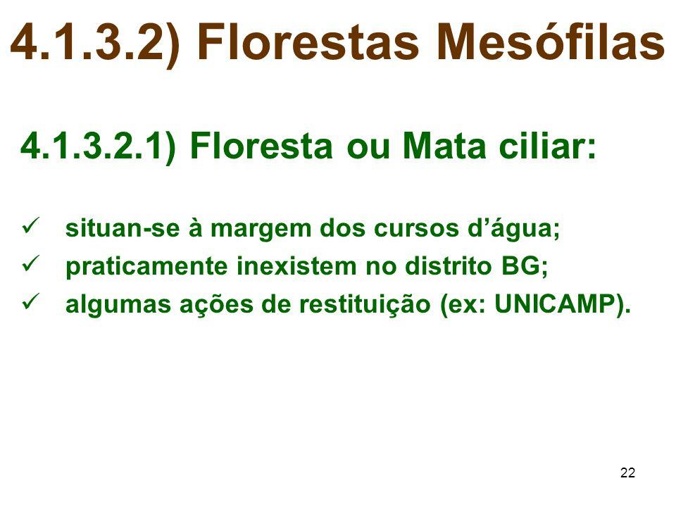 22 4.1.3.2) Florestas Mesófilas 4.1.3.2.1) Floresta ou Mata ciliar: situan-se à margem dos cursos d'água; praticamente inexistem no distrito BG; algum